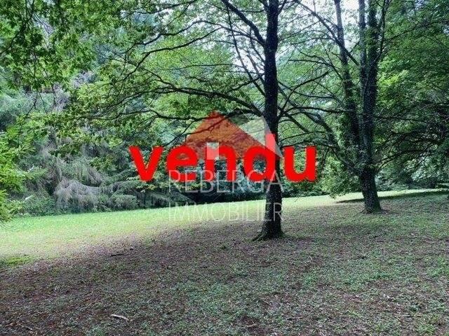 1 46 Saint-Amans-Valtoret